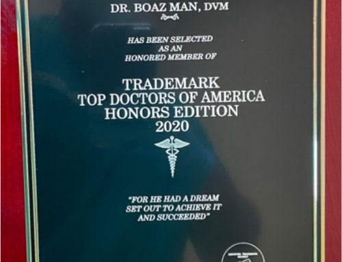2020 Trademark Top Doctors of America Honors Edition: Inclusion